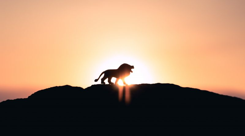 Domadora de leones